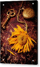Weathered Sunflower With Gold Key Acrylic Print