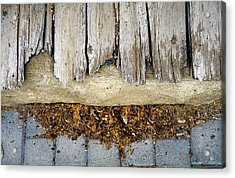 Acrylic Print featuring the photograph Weathered by Tom Romeo