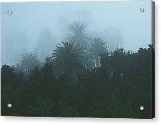 Weatherspeak Acrylic Print