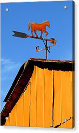 Weathervane Acrylic Print by Robert Lacy