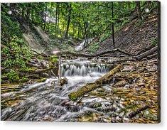 Weaver's Creek Falls Acrylic Print
