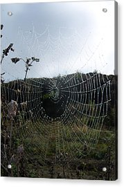 Web Browser Acrylic Print by Ken Day