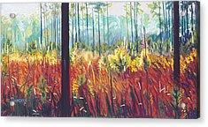 Weeds Acrylic Print by David Randall