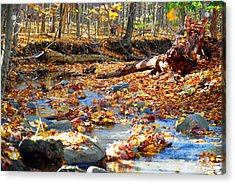 Weeping Rock Brook Acrylic Print by Peter  McIntosh