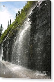 Weeping Wall Acrylic Print by Diane Greco-Lesser
