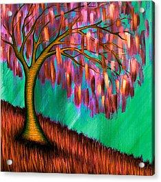 Weeping Willow IIi Acrylic Print by Brenda Higginson
