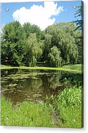 Acrylic Print featuring the photograph Weeping Willows Pere Marquette by Beth Akerman