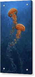 Acrylic Print featuring the painting Weightless - Pacific Nettle Jellyfish Study  by Karen Whitworth