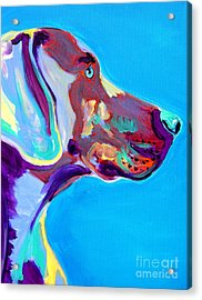 Weimaraner - Blue Acrylic Print by Alicia VanNoy Call