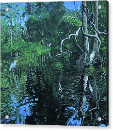 Wekewa River Acrylic Print