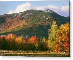 Welch And Dickey Mountains Acrylic Print