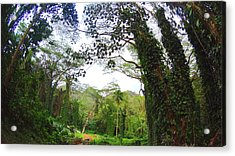 Welcome To Hawaii Acrylic Print by Jera Sky