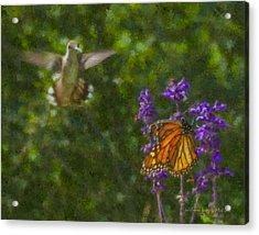 Welcome Vistors Acrylic Print