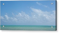 Acrylic Print featuring the photograph We'll Wait For Summer by Yvette Van Teeffelen