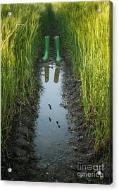 Wellies With Reflection Acrylic Print by Amanda Elwell