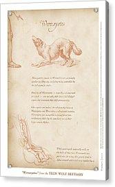 Werecoyotes Acrylic Print