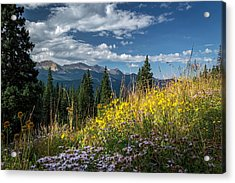 West Elk Mountain Range Acrylic Print
