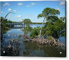 Acrylic Print featuring the photograph West Lake Park by Artists With Autism Inc