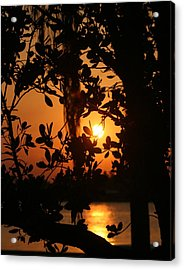 Acrylic Print featuring the photograph West Palm Beach Sunrise by Diane Merkle