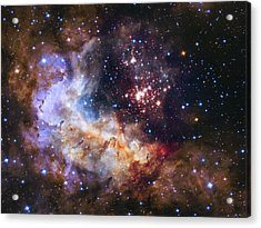 Westerlund 2 - Hubble 25th Anniversary Image Acrylic Print by Adam Romanowicz