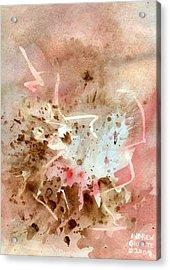 Western Acrylic Print