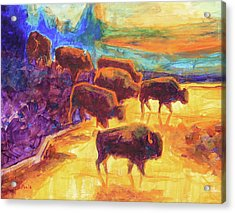 Western Buffalo Art Bison Creek Sunset Reflections Painting T Bertram Poole Acrylic Print by Thomas Bertram POOLE