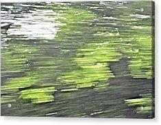 Westhampton's Blur Acrylic Print by Tim Doubrava