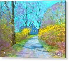 Westhaver Road  Acrylic Print by Rae  Smith