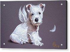 Westie Angel Acrylic Print
