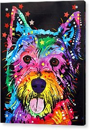 Acrylic Print featuring the painting Westie by Dean Russo