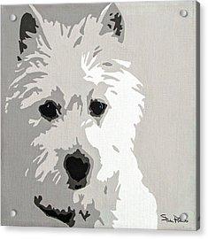 Westie Acrylic Print