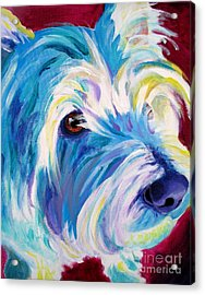 Westie - That Look Acrylic Print by Alicia VanNoy Call