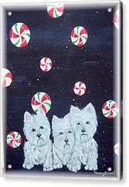 Westies In Candy Land Acrylic Print by Tammy Brown