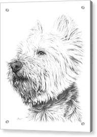 Westy Acrylic Print