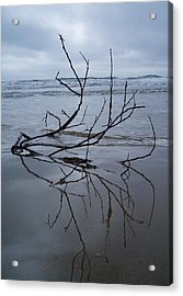 Wet Feet Acrylic Print by Mira Cooke