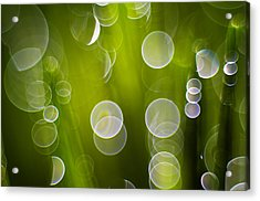 Wet Grass  Acrylic Print by Silke Magino