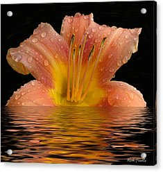 Wet Lilly Acrylic Print by Rick Friedle