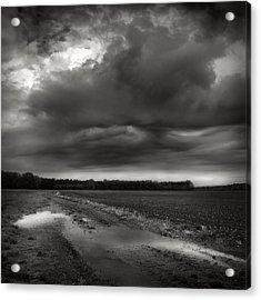 Wet Spring Acrylic Print by Jaromir Hron