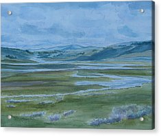 Wet Summer In Big Sky Country Acrylic Print by Jenny Armitage