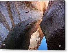 Wetherill Canyon Acrylic Print