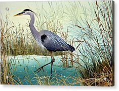 Acrylic Print featuring the painting Wetland Beauty by James Williamson