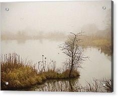 Acrylic Print featuring the painting Wetland Wonders Of Winter by Jordan Blackstone