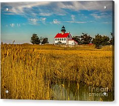Acrylic Print featuring the photograph Wetlands At East Point Light by Nick Zelinsky