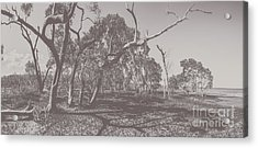 Wetlands Of Old Acrylic Print by Jorgo Photography - Wall Art Gallery