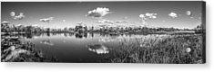 Wetlands Panorama Monochrome Acrylic Print
