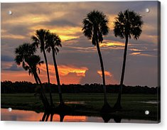 Wetlands Sunset Acrylic Print