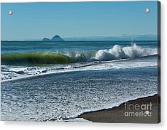 Acrylic Print featuring the photograph Whale Island by Werner Padarin