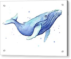 Whale Watercolor Humpback Acrylic Print