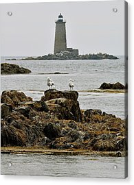 Whaleback Lighhouse From Fort Constitution Acrylic Print by Rick Frost