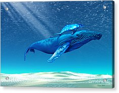Whales Acrylic Print by Corey Ford